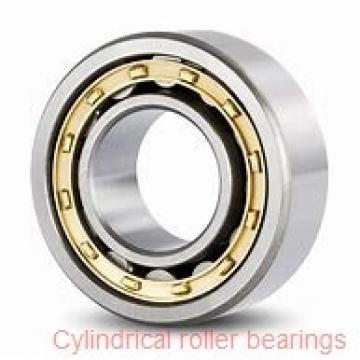 1.969 Inch | 50 Millimeter x 2.894 Inch | 73.5 Millimeter x 0.748 Inch | 19 Millimeter  SKF RN 2010 ECM/VB013  Cylindrical Roller Bearings