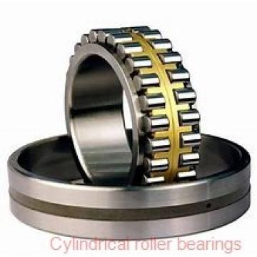 0.787 Inch | 20 Millimeter x 1.85 Inch | 47 Millimeter x 0.709 Inch | 18 Millimeter  SKF NJ 2204 ECP/C3  Cylindrical Roller Bearings