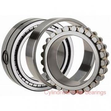3.74 Inch | 95 Millimeter x 7.874 Inch | 200 Millimeter x 1.772 Inch | 45 Millimeter  SKF NJ 319 ECJ/C3  Cylindrical Roller Bearings