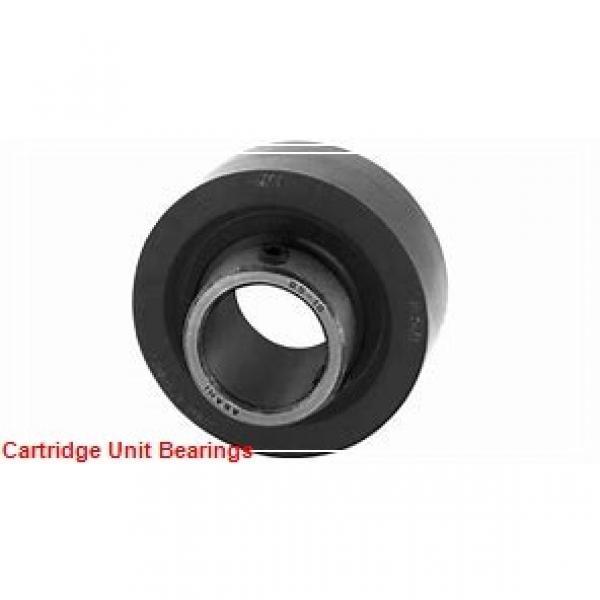 QM INDUSTRIES TAMC22K100SEM  Cartridge Unit Bearings #1 image